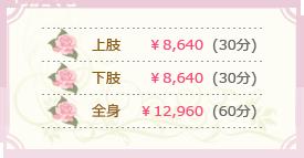 上肢¥8,640 下肢¥8,640 全身¥12,960